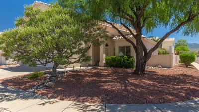 Tucson Single Family Home For Sale: 239 S Eastern Dawn Avenue