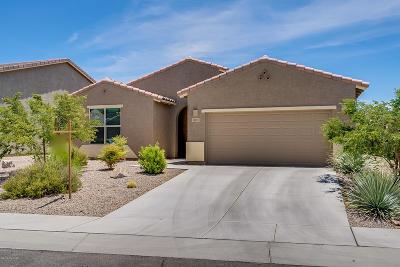Single Family Home For Sale: 1024 E Harshaw Land Lane