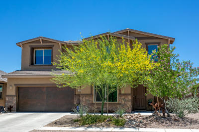 Oro Valley Single Family Home For Sale: 2321 W Sculptor Street
