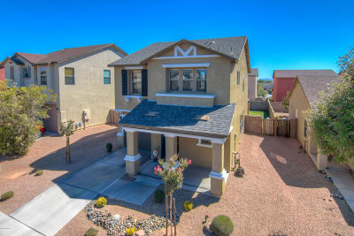 Tucson Single Family Home For Sale: 6996 S Blueeyes Drive