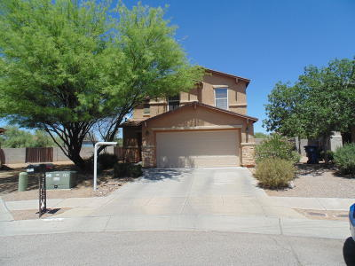 Tucson Single Family Home For Sale: 6709 S Parliament Drive