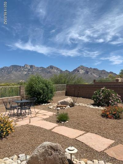 Oro Valley Single Family Home Active Contingent: 321 W Silvertip Road