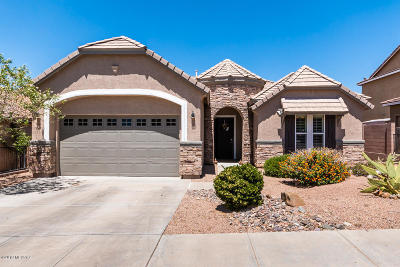 Vail Single Family Home For Sale: 17205 S Painted Vistas Way