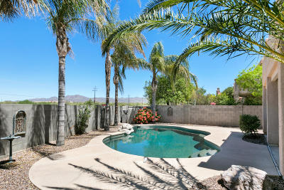 Tucson Single Family Home For Sale: 11281 N Chynna Rose Place