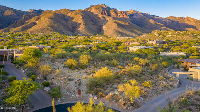 Tucson Residential Lots & Land Active Contingent: 1803 E Quiet Canyon Drive #46