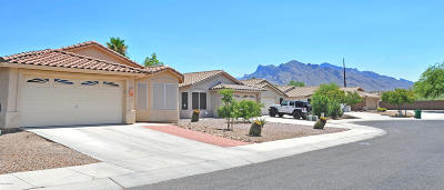 Tucson Single Family Home For Sale: 8916 N Tortolita Bluffs Place
