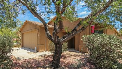 Tucson Single Family Home For Sale: 6689 S Avenida Carmencita