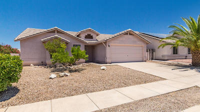 Tucson Single Family Home For Sale: 8113 S Carbury Way