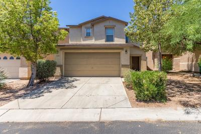 Tucson Single Family Home For Sale: 3302 W Placita De La Tularosa