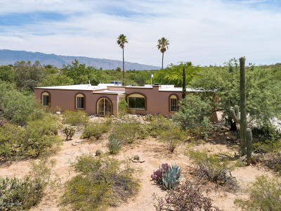 Tucson Single Family Home For Sale: 10408 E Camino Tesote