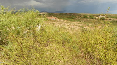 Rio Rico Residential Lots & Land For Sale: 877 Lisboa Court #24
