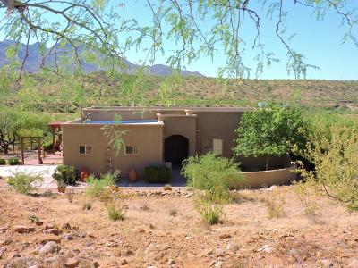 Rio Rico Single Family Home Active Contingent: 1786 Zimmer Court
