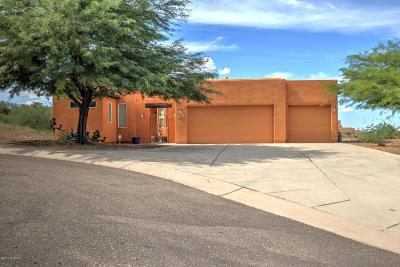 Rio Rico Single Family Home For Sale: 372 Luna Vista Court