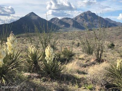 Rio Rico Residential Lots & Land For Sale: Perezoso Court #71/2