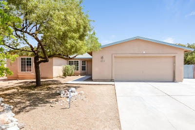 Tucson Single Family Home For Sale: 9804 E Stonehaven Way
