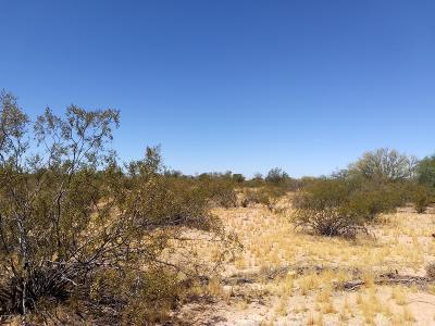 Residential Lots & Land For Sale: 7351 N Sandario Road