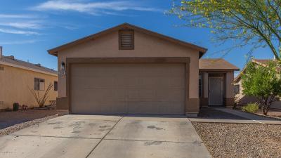 Tucson Single Family Home For Sale: 1656 W Jack Burnett Loop