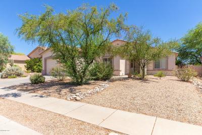 Tucson Single Family Home For Sale: 5561 W Red Rock Ridge Street