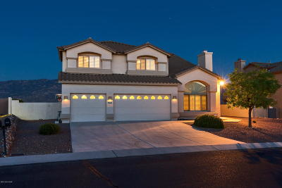 Tucson Single Family Home For Sale: 39661 S Mountain Shadow Drive