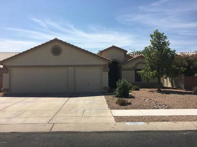 Tucson Single Family Home For Sale: 7255 W Silver Sand Drive