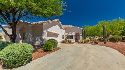 Tucson Single Family Home For Sale: 1424 W Bridalveil Place