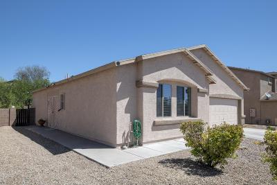 Tucson Single Family Home For Sale: 3600 W Avenida Sombra