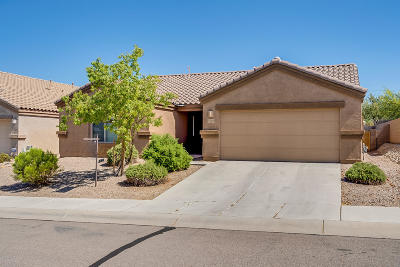 Tucson Single Family Home For Sale: 5218 W Spring Willow Court