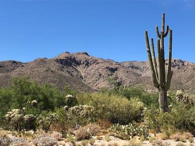 Tucson Residential Lots & Land For Sale: 4951 N Avenida De Franelah #3