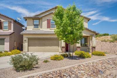 Vail Single Family Home For Sale: 10471 S Boothill Way