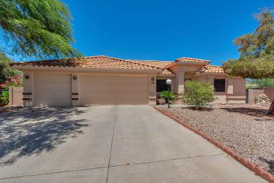 Tucson Single Family Home Active Contingent: 2940 W Placita Enrica