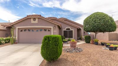 Oro Valley Single Family Home Active Contingent: 2457 E Big View Drive