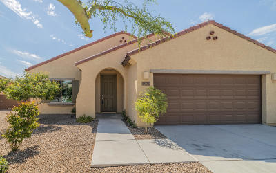 Tucson Single Family Home For Sale: 8075 N Circulo El Palmito