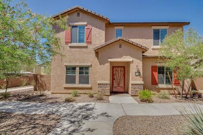 Tucson Single Family Home For Sale: 10974 E Palmetto Pointe Trail