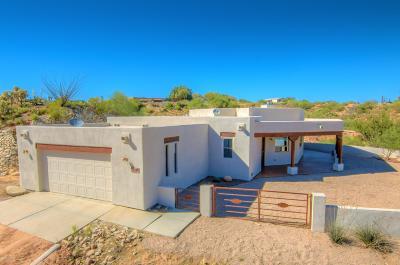 Tucson Single Family Home For Sale: 4455 E Camino Arista