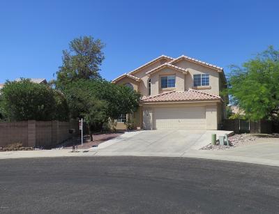 Tucson Single Family Home For Sale: 2960 W Corte Madelena