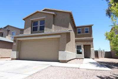Tucson Single Family Home For Sale: 364 W Great White Street