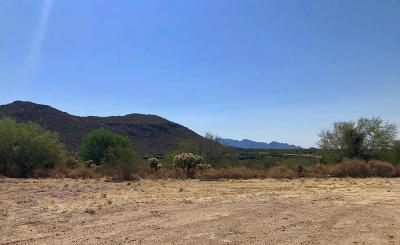 Dove Mountain Resort (1-153) Residential Lots & Land For Sale: 6135 W Seven Saguaros Circle #62