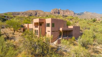 Tucson Single Family Home For Sale: 7356 N Camino Sin Vacas