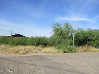 Rio Rico Residential Lots & Land For Sale: 541 Valdez Court #8
