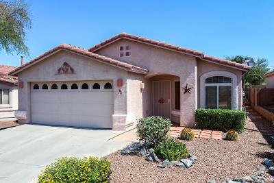 Tucson Single Family Home For Sale: 494 W Tara Danette Drive