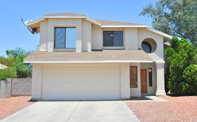 Tucson Single Family Home For Sale: 9001 N Tiger Eye Way