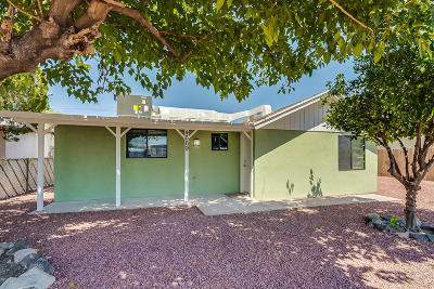 Tucson Single Family Home For Sale: 4669 N Iroquois Avenue