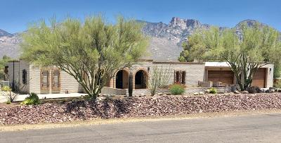 Pima County Single Family Home For Sale: 11840 N Tami Place