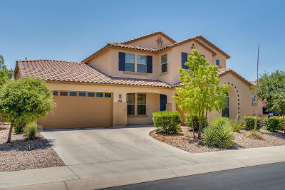 Marana Single Family Home Active Contingent: 12396 N Pathfinder Drive