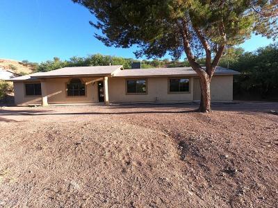 Rio Rico Single Family Home For Sale: 337 Ambrosia Court