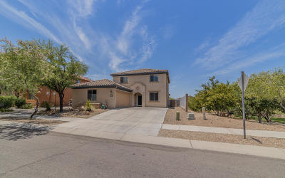 Tucson Single Family Home Active Contingent: 6004 S Meadow Breeze Drive