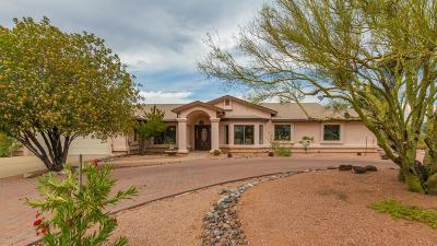 Tucson Single Family Home For Sale: 11323 E Old Spanish Trail