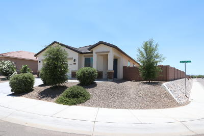 Single Family Home For Sale: 11289 W Rock Art Drive