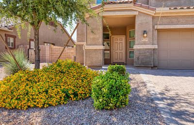 Marana Single Family Home For Sale: 8796 W Moon Spring Road