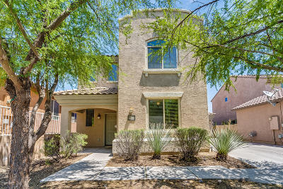 Tucson Single Family Home For Sale: 10721 E Sanctuary Ridge Lane
